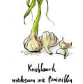 1064-artur-bodenstein-carolineseidler-wienerin