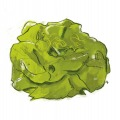 905-artur-bodenstein-carolineseidler-salat