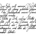 1474-artur-bodenstein-carolineseidler-kapsreiter