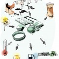 1208_blagovesta_bakardjieva_carolineseidler-com_biogas