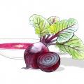 976-eva-vasari-carolineseidler-food