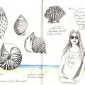 039-kerstin-lu-carolineseidler_Sketchbook_7