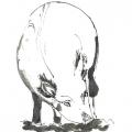 818-kerstin-lu-carolineseidler-gdraw_schwein