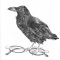 897-kerstin-lu-carolineseidler-sketchbook