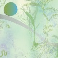 Sarah-egbert-eiersholt-carolineseidler-herbalimpulse-3