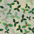 stefanie-hilgarth-carolineseidler-klassischeweihnachten