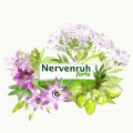785_blagovesta_bakardjieva_carolineseidler-com_nervenruh