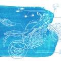 210-Irene-Sackmann-carolineseidler-com-Suzuki