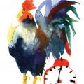 maria-ruban-carolineseidler-com-rooster