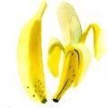 Maria_Ruban_carolineseidler_com_Hofer_Bananen
