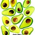 Maria_Ruban_carolineseidler_com_avocado